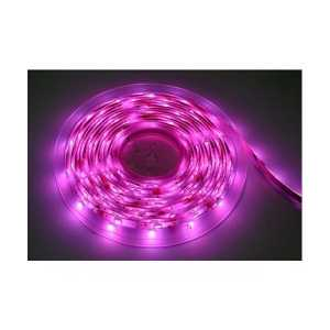 240V LED Strip Purple-Violet 380-450 nm 60 LEDs per meter