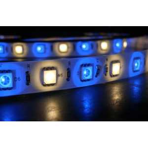 Akwil Super Bright LED Strip RGB and Warm White 24V 5m per reel 180x RGB 180x WW 5050 SMD LEDs