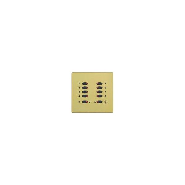Mode Tiger Switch Plate Fascia TP-S-PBR-** (Single Gang, MK Aspect Polished Brass)